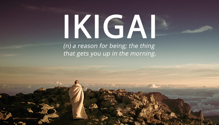 Finding Your Ikigai